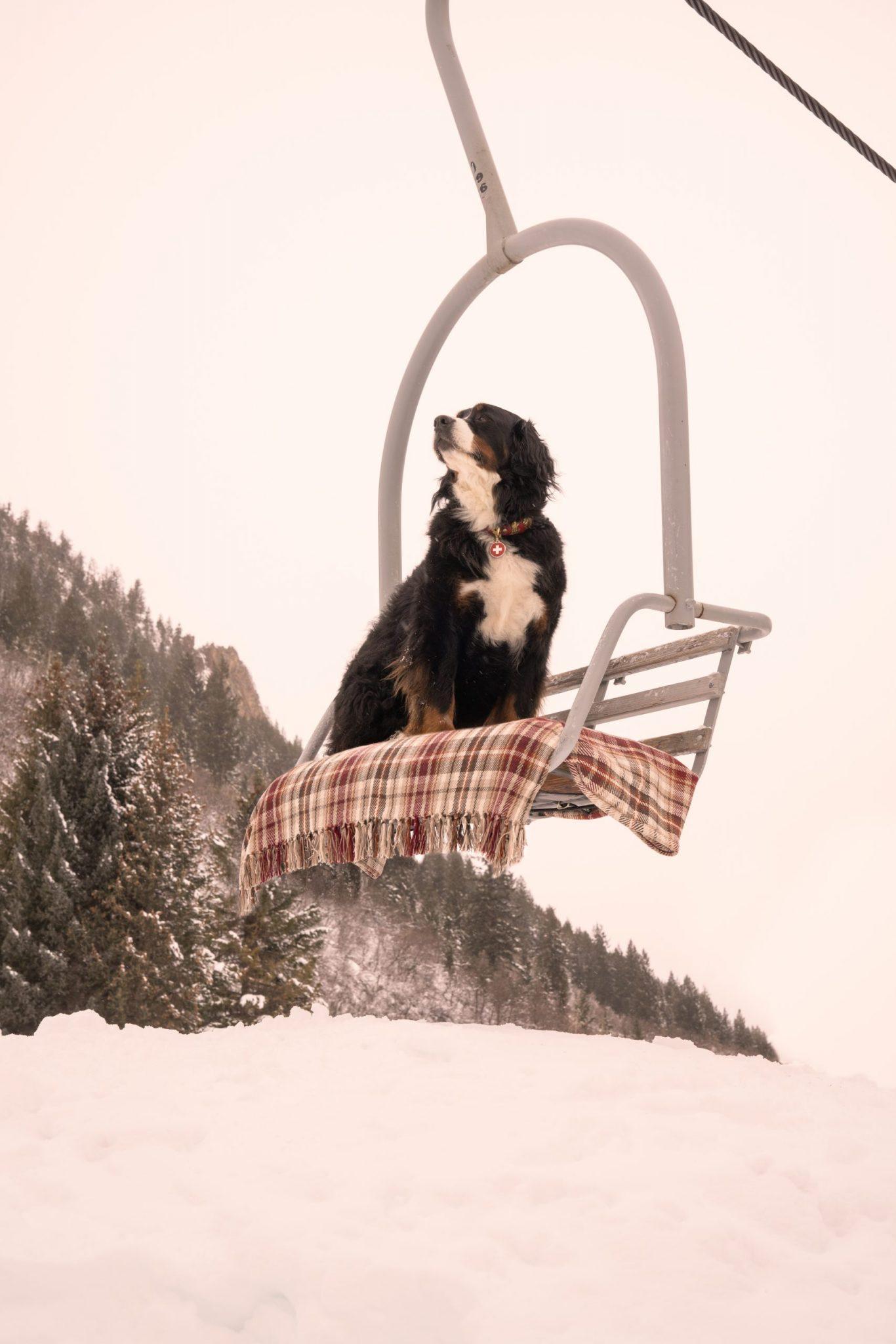 Gray Malin Aspen The Little Nell Photography Art Cherry Creek Magazine