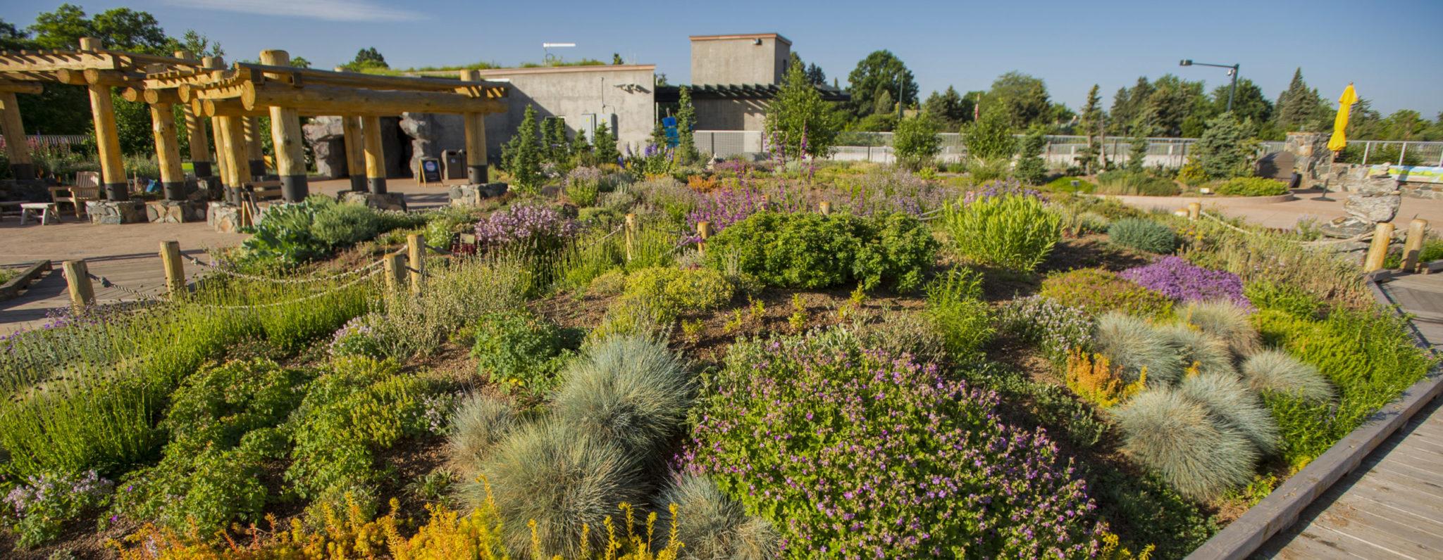 Denver Botanic Gardens Children's Programs